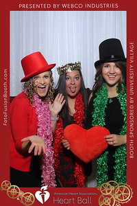 AHA-Heartball20-035