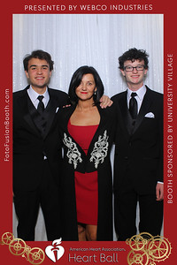 AHA-Heartball20-003