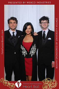 AHA-Heartball20-004