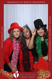 AHA-Heartball20-036