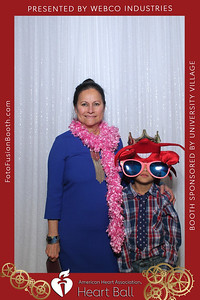 AHA-Heartball20-018