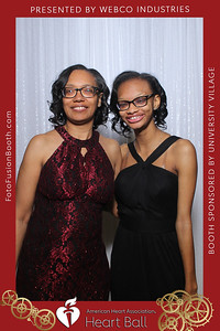 AHA-Heartball20-042