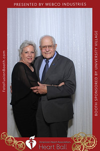 AHA-Heartball20-016