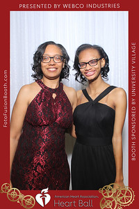 AHA-Heartball20-043