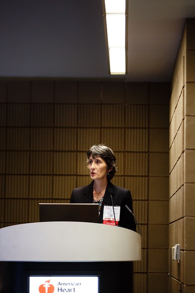 Diane Bild during ReSS:ReSS Session: Funding Organizations Report