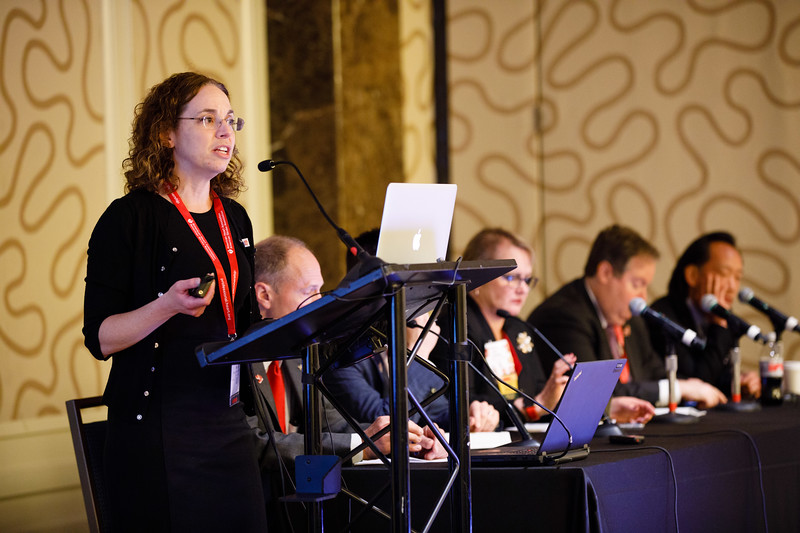 Alisa Wolberg, PhD, speaks during Concurrent III C session
