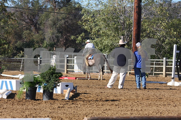 2014 AHASC Santa Barbara Fall Show