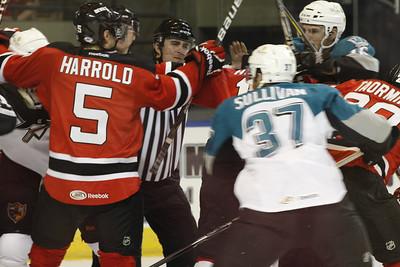 Albany Devils 2011/2012