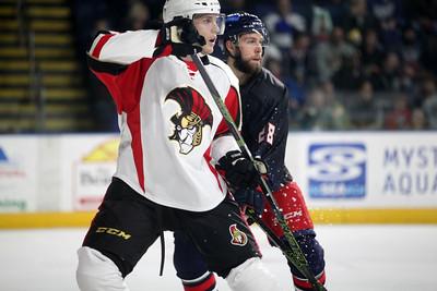 Binghamton Senators 2015/2016