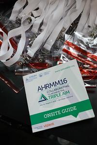 AHRMM16-3301