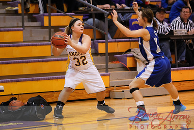 JV GBBall vs Carroll 20140129-0071