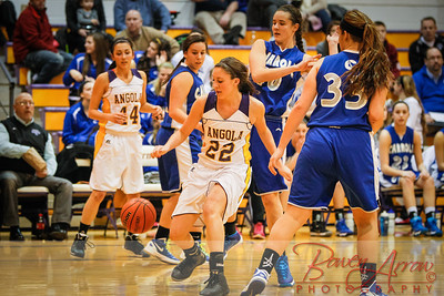 JV GBBall vs Carroll 20140129-0054