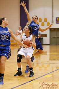 AHS GBball vs Carroll 20140129-0270
