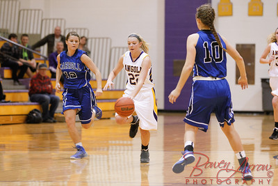AHS GBball vs Carroll 20140129-0251