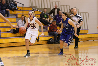 AHS GBball vs Carroll 20140129-0301