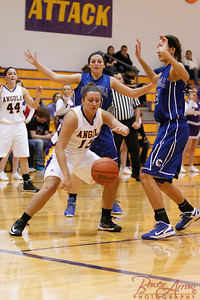 AHS GBball vs Carroll 20140129-0280