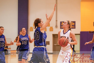 AHS GBball vs Carroll 20140129-0248