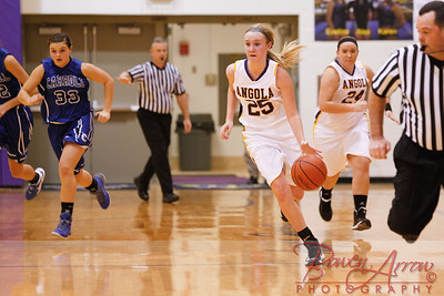 AHS GBball vs Carroll 20140129-0245