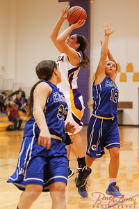 AHS GBball vs Carroll 20140129-0273