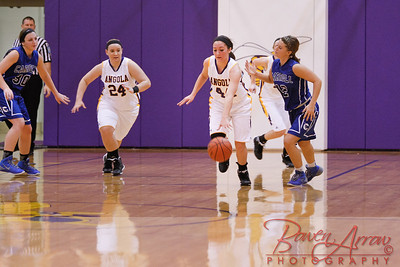 AHS GBball vs Carroll 20140129-0268