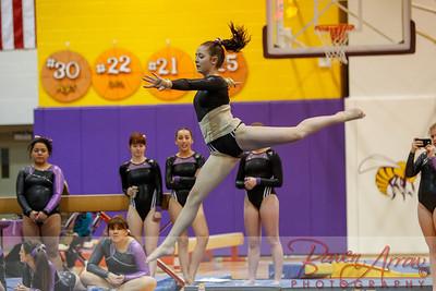 AHS Gymnastics 2014-1171