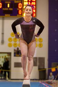 AHS Gymnastics 2014-0682