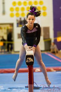 AHS Gymnastics 2014-0623