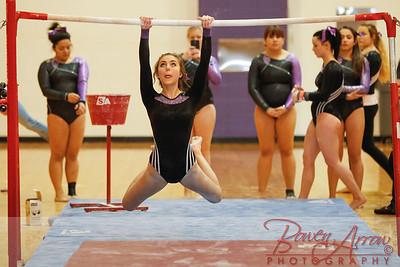 AHS Gymnastics 2014-0248