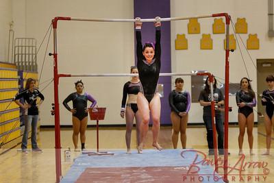 AHS Gymnastics 2014-0276