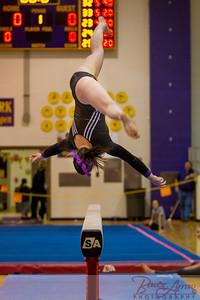AHS Gymnastics 2014-0664