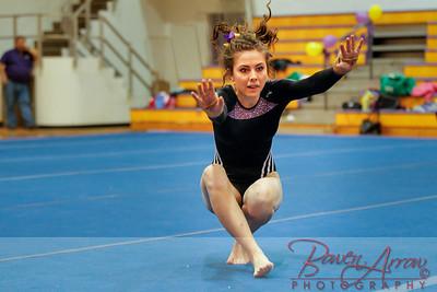 AHS Gymnastics 2014-1045
