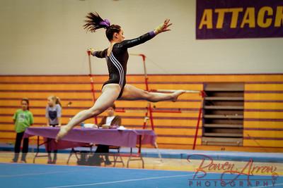 AHS Gymnastics 2014-1262