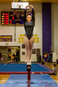 AHS Gymnastics 2014-0632