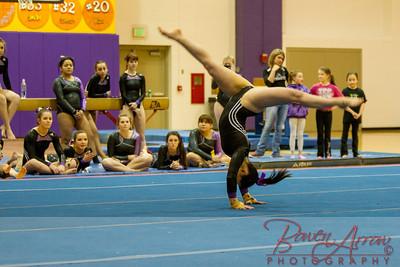 AHS Gymnastics 2014-1291
