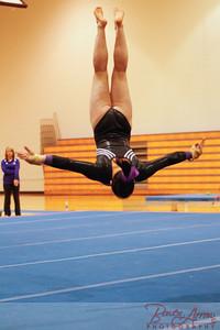 AHS Gymnastics 2014-1219