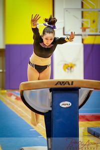 AHS Gymnastics 2014-0175
