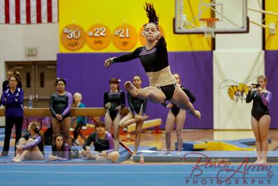 AHS Gymnastics 2014-1129