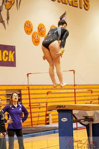 AHS Gymnastics 2014-0234