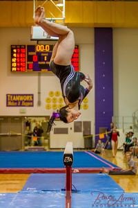 AHS Gymnastics 2014-0701