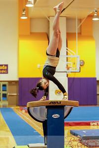 AHS Gymnastics 2014-0179