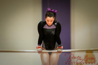 AHS Gymnastics 2014-0273