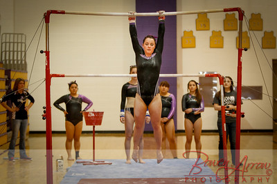 AHS Gymnastics 2014-0270