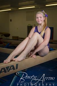 Gymnastics Team 20140111-0038
