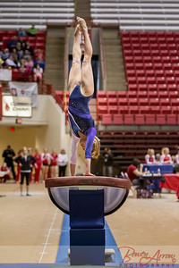 Gymnastics State 2014-03-22-0330