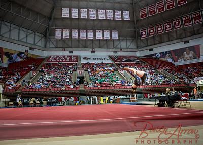 Gymnastics State 2014-03-22-0215