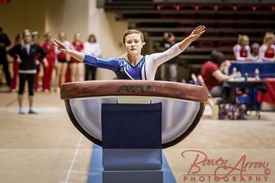 Gymnastics State 2014-03-22-0324