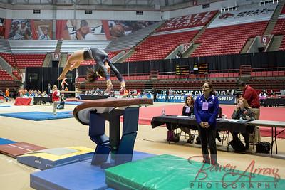 Gymnastics State 2014-03-22-0390