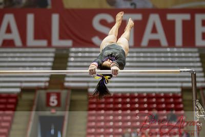 Gymnastics State 2014-03-22-0500