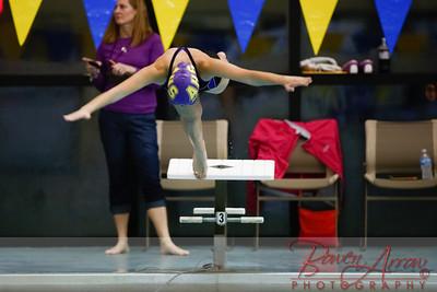 Swim vs Southside 20131210-0071