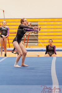 Gymnastivs vs Lakeland 20150302-0150